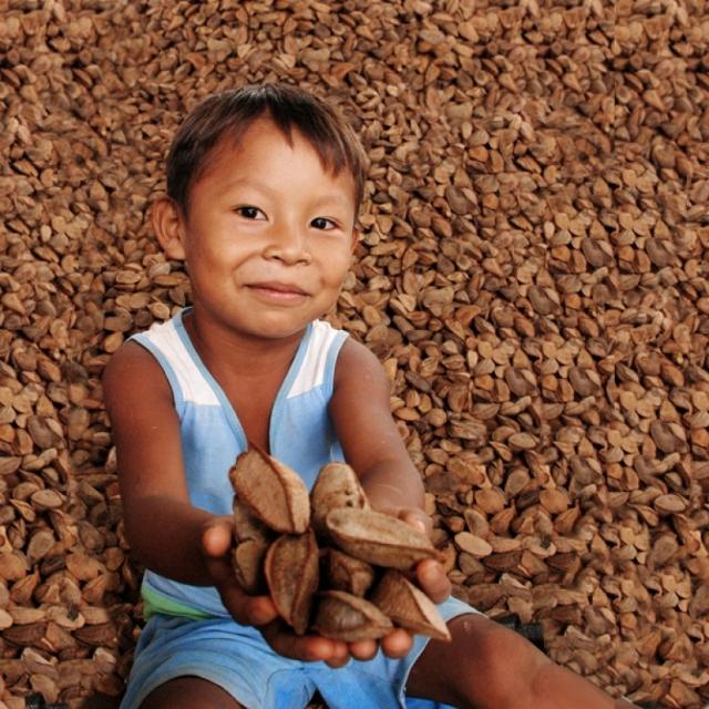 Criança Rikbaktsa com amêndoas de castanha do Brasil. Foto: Laércio Miranda