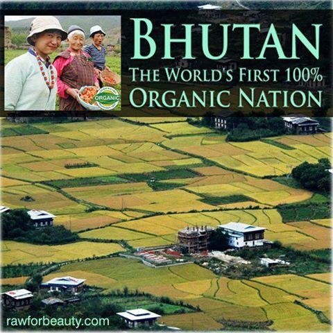 Bhutan,el primer país del mundo con el 100% de su agricultura ecológica1