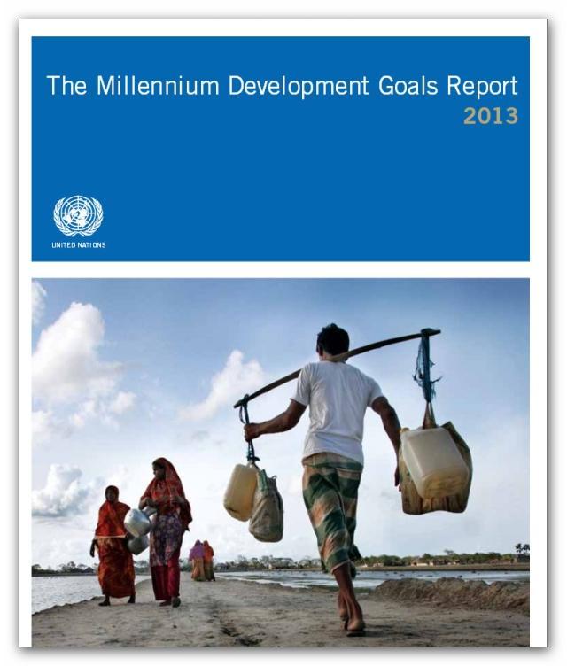 The Millenium Development Goals 2013
