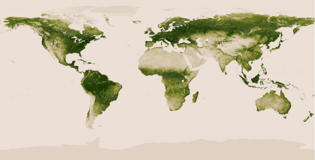 Vegetation On Global Forest - NASA-NOAA
