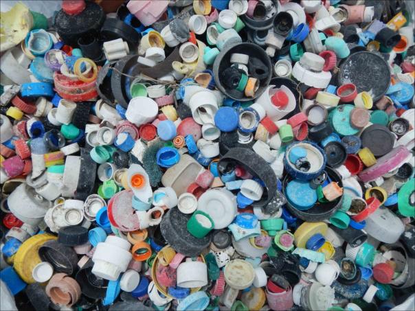 Plastic bottle caps. Credit: NOAA's Marine Debris Program